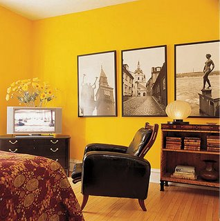 Pantone 2009 Color of the Year: Mimosa
