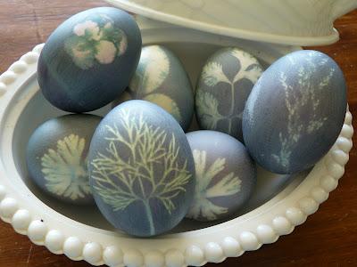 Botanical Eggs | KitchAnn Style