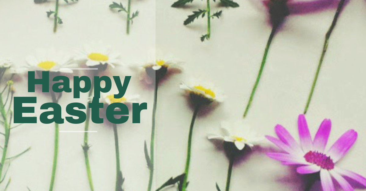 Happy Easter - dried flower ideas