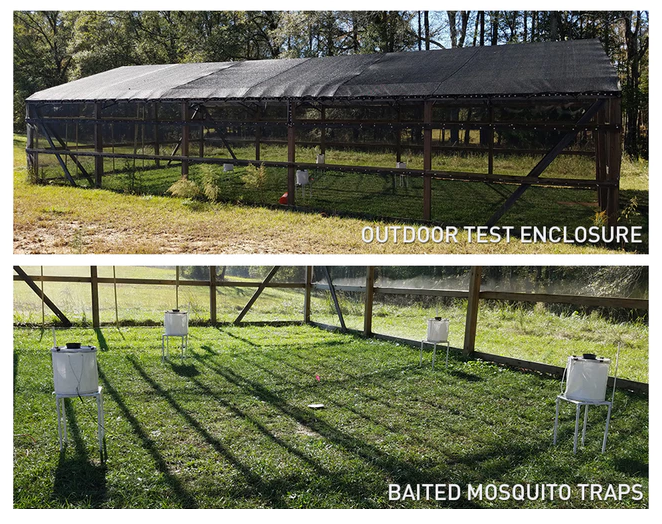 Mosquito Control for outdoor kitchen and yard