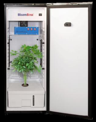 Cannabis Appliance Segment