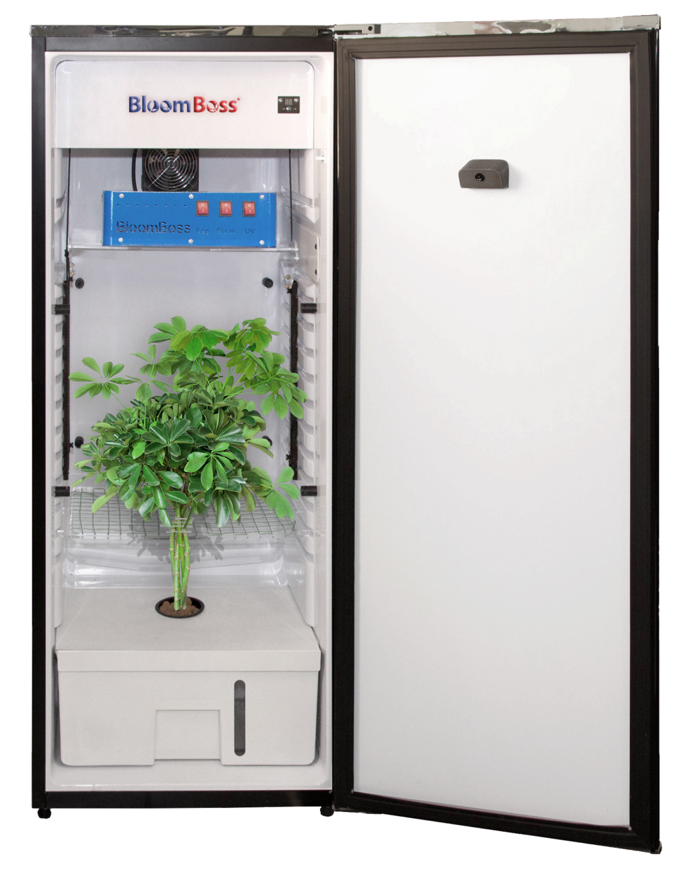 Cannabis Appliance Segment