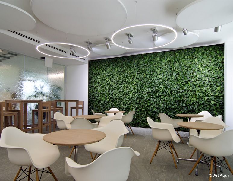 Biophilia-Based Design Trends