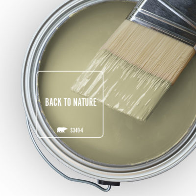Back to Nature Paint color by Behr