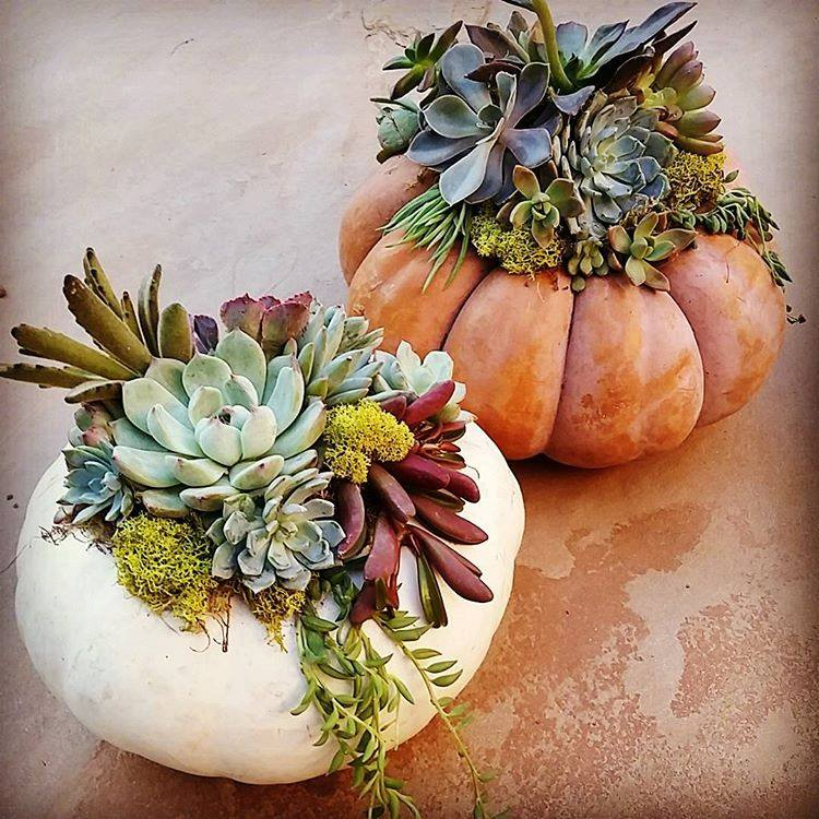 Simple Yet Impressive DIY Thanksgiving Centerpiece