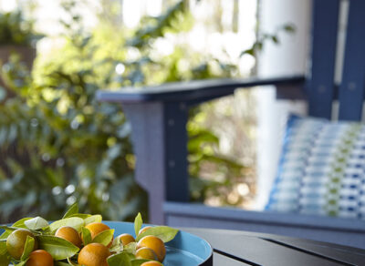 BEHR Color Trends 2021 Outdoor Excape inspirational setting