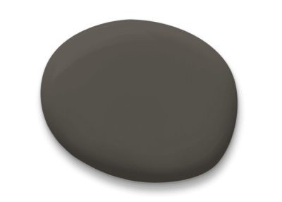 Sherwin-Williams Color of the Year 2021: Urbane Bronze paint splotch